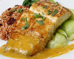 Miso Marinated Halibut Fillets