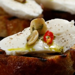 Buffalo Mozzarella Crostini's