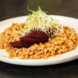 Wheat Berry and Beet Salad with Maple Soy Vinaigrette